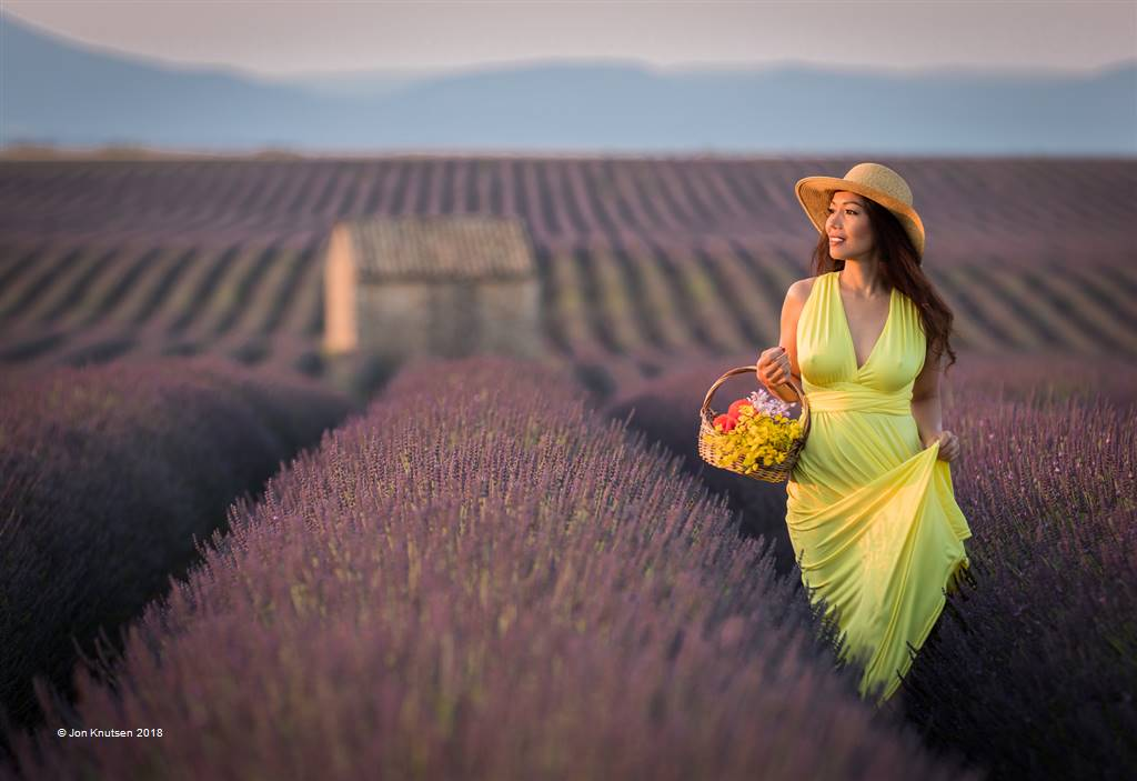 Jon Knutsen – Morning Walk in Lavender Field – Open Colour