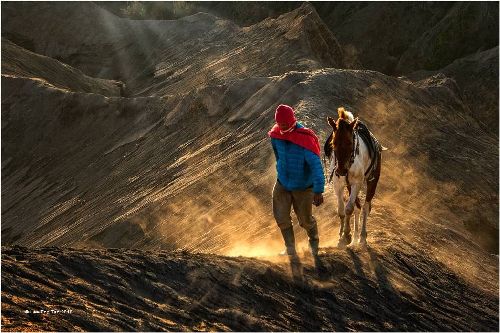 Lee Eng Tan – Groom and Horse 2 – Photo Travel