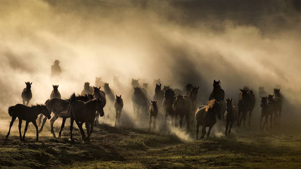 Marian Plaino - Cappadocia, the Land of Beautiful Horses - FIAP Ribbon
