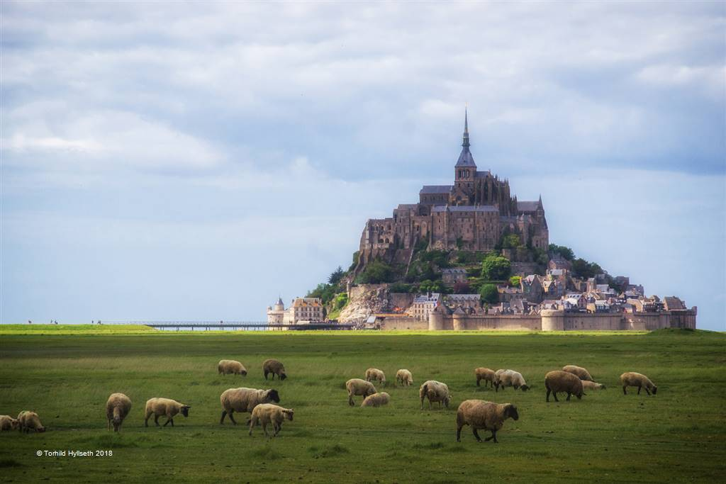 Torhild Hyllseth – Mont Saint Michel – Photo Travel