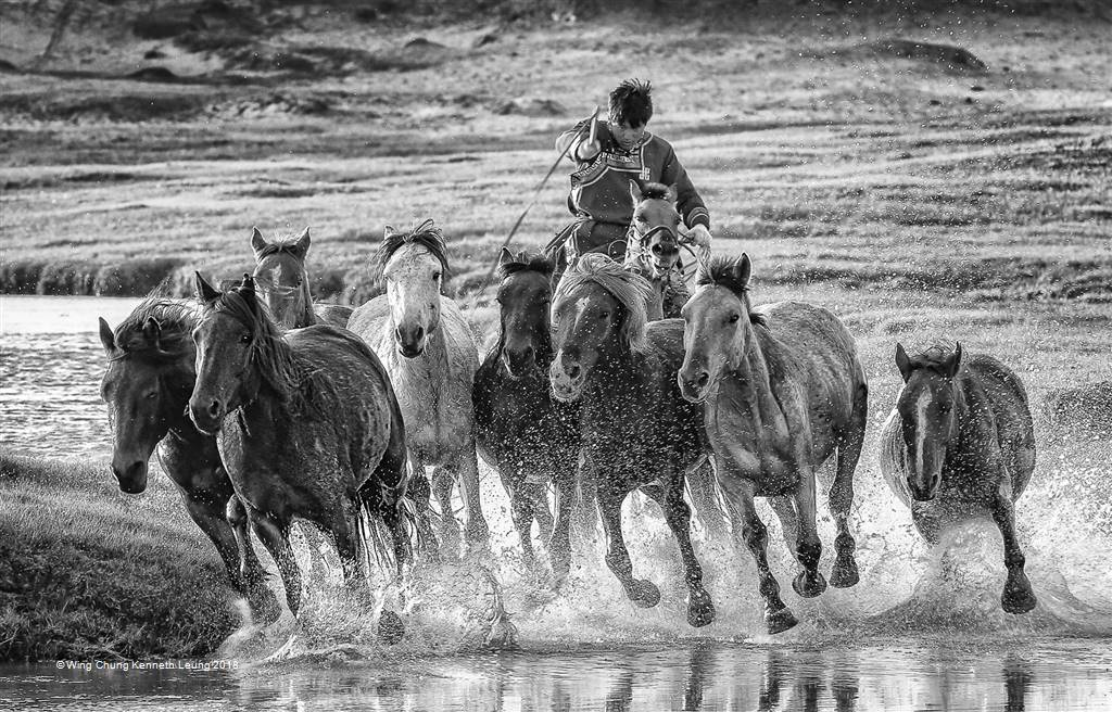 Wing Chung Kenneth Leung – Horses Splash BW – Photo Travel