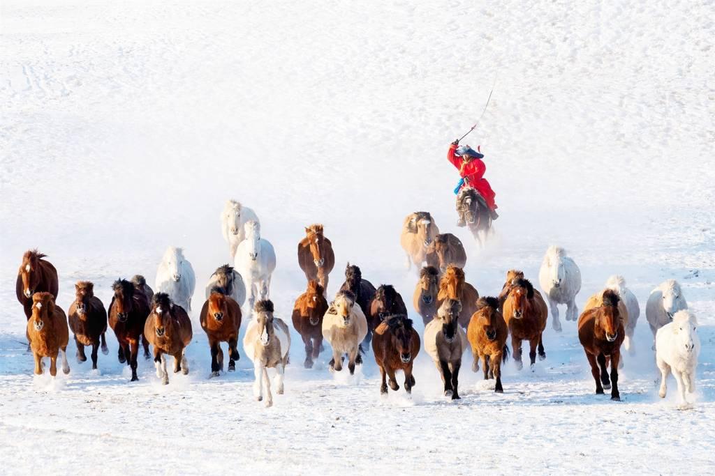 Zay Yar Lin - Snow Horseman - PSA Bronze medal